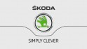 Steven Mackintosh - The SKODA Octavia Family